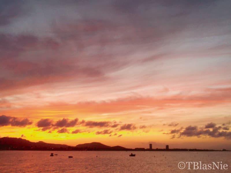 Yellow blaze - Photo credit: Toñi Blasco