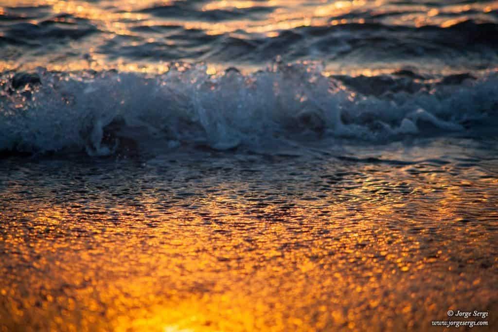 Olas rompiendo en la orilla